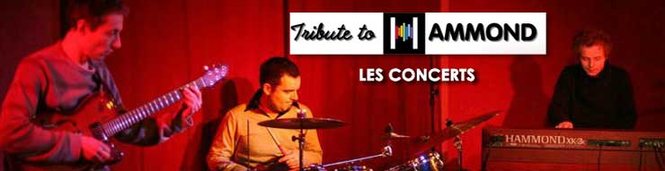 tribute to hammond - les concerts